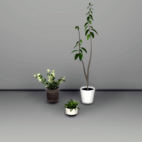 3-deco-plants
