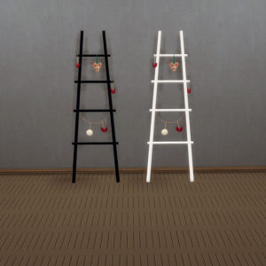 Hannie ladder