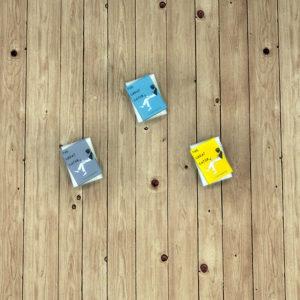 gosik-books